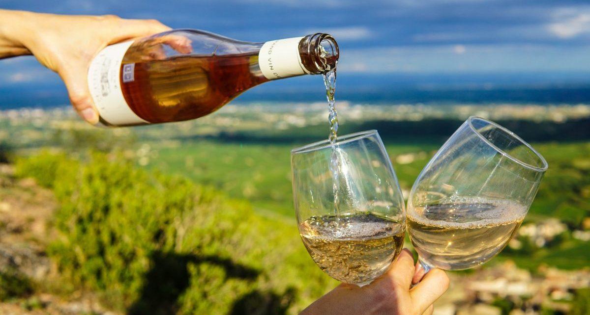 Enjoy a glass of dry farmed wine - SECCO Wine Club